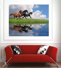 Affiche poster décoration murale Chevaux réf 21975400 (6 dimensions)