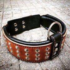 Cuir véritable fait à la main collier de chien, clous, rembourrée, Top qualité. XS-XL