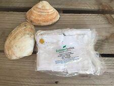 3x4 inches WHITE Cloth Muslin Drawstring Bags , Art Craft Bags ,Qty 25 / 50 /100