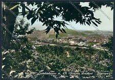 Grosseto Castel del Piano foto cartolina B2232 SZG