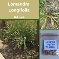 "Lomandra Longifolia ""Mat Rush"" Seeds"