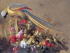 Still Life Parrot Parakeet J. Merck Tile Mural Kitchen Backsplash Marble Ceramic