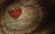 Fototapete Tapete Wandbild Vlies 1D20045120 #GESCHENK GRATIS# Rotes Herz auf Hol
