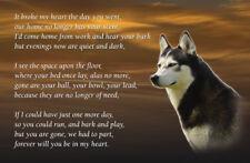 Husky Dog Fridge Magnet Pet Animal loss Bereavement Memorial Gift