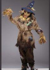 Mens Deluxe Halloween Dead Zombie Scarecrow Costume