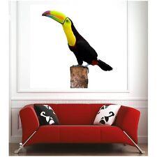 cartel cartel tucán 57267340 Arte decoración Pegatinas