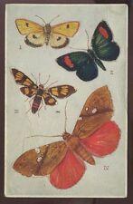 Butterflies x4 R J WEALTHY Artist Drawn PPC
