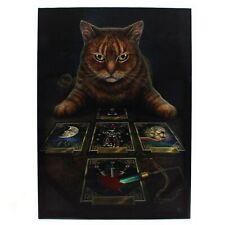 Lisa Parker - Lienzo modelo The Reader Tabby Cat (SD247)