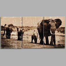 FRAMED Animal Canvas Print Elephant Canvas Painting Wall Art Poster-3pcs