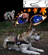 Brown Dog Harness S M L XL padded extra Siberian Husky Malamute Staffordshire