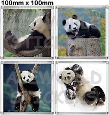 SET 4 Sottobicchieri PANDA baby giant BEAR white black coaster BICCHIERI glass