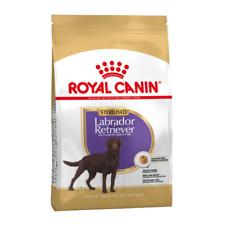 Royal Canin Sterilised Labrador Retriever Adult 3KG 12KG 24KG Dry Dog Food