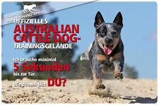 ! AUSTRALIAN CATTLE DOG ! Metall Warnschild .05