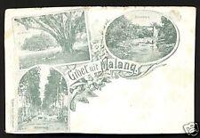 Gruss aus Malang Art Nouveau Java Indonesia ca 1899
