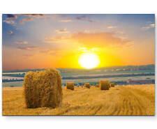 Feld mit Strohballen und Sonnenuntergang