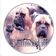 ADESIVI Motivo 1 Bullmastiff Bull Mastiff Molosser Auto Adesivo Sticker