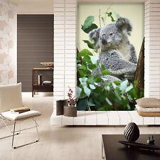 3D koala Parete Murale Foto Carta da parati immagine sfondo muro stampa