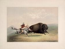 "Catlin North American Indian Portfolio: ""Buffalo Chase"" (1844) — Fine Art Print"
