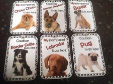pet dog lives here pampered chow bulldog labrador pug advisory sign