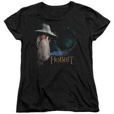 The Hobbit Unexpected Journey Movie Gandalf The Door Women's T-Shirt Tee