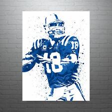 Peyton Manning Indianapolis Colts FREE US SHIPPING
