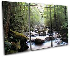 Forest Stream ECO Landscapes TREBLE LONA pared arte Foto impresion