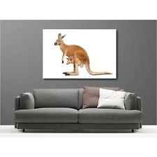 Tableaux toile déco rectangle kangourou 56428966