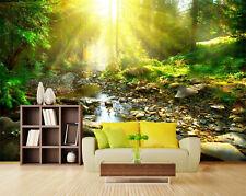 3D Wald Sonnenlicht 7 Fototapeten Wandbild Fototapete Bild Tapete Familie Kinder