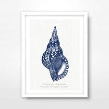 SEA SHELL ILLUSTRATION SEASIDE NAUTICAL ART PRINT Blue Home Decor Wall Picture