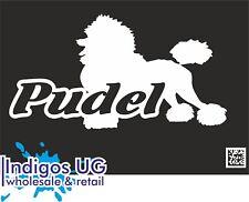 Aufkleber / Autoaufkleber - Pudel  Caniche Dog - 170x90mm DE7153